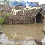 malar-trust-alluvione